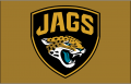 Jacksonville Jaguars 2013-Pres Alternate Logo iron on transfer
