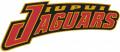 IUPUI Jaguars 1998-Pres Wordmark Logo decal sticker