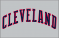Cleveland Indians 1989-1993 Jersey Logo iron on transfer