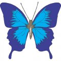 Butterfly DIY iron on stickers (heat transfer) version 25
