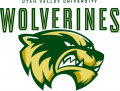 Utah Valley Wolverines 2008-2011 Primary Logo iron on transfer