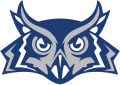 Rice Owls 2010-2016 Alternate Logo iron on transfer