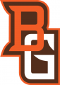 Bowling Green Falcons 2006-2011 Alternate Logo 05 iron on transfer