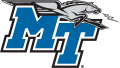 Middle Tennessee Blue Raiders 2007-Pres Primary Logo iron on transfer