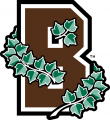 Brown Bears 2003-Pres Alternate Logo decal sticker