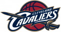Cleveland Cavaliers 2003-2010 Primary Logo iron on transfer