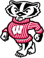 Wisconsin Badgers 2002-Pres Secondary Logo 01 iron on transfer
