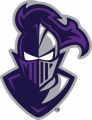Furman Paladins 2013-Pres Alternate Logo iron on transfer