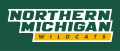 Northern Michigan Wildcats 2016-Pres Wordmark Logo decal sticker