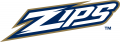 Akron Zips 2002-Pres Wordmark Logo 02 decal sticker