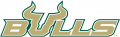 South Florida Bulls 2003-Pres Wordmark Logo 02 iron on transfer