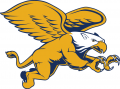 Canisius Golden Griffins 2006-Pres Secondary Logo 02 decal sticker