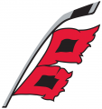 Carolina Hurricanes 2018 19-Pres Alternate Logo decal sticker