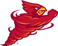 Iowa State Cyclones 2007-Pres Alternate Logo iron on transfer