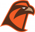 Bowling Green Falcons 2006-Pres Secondary Logo 03 iron on transfer