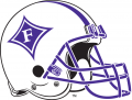 Furman Paladins 2000-2012 Helmet iron on transfer