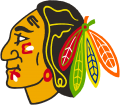 Chicago Blackhawks 1986 87-1988 89 Primary Logo iron on transfer