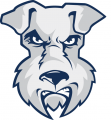 St. Francis Terriers 2001-2013 Alternate Logo iron on transfer