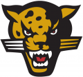 IUPUI Jaguars 1998-2007 Secondary Logo 01 decal sticker