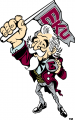 Eastern Kentucky Colonels 2004-Pres Mascot Logo iron on transfer