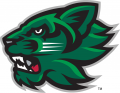 Binghamton Bearcats 2001-Pres Secondary Logo decal sticker