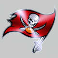Tampa Bay Buccaneers Stainless steel logo iron on transfer