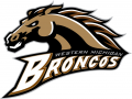 Western Michigan Broncos 1998-2015 Primary Logo iron on transfer