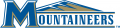 Mount St. Marys Mountaineers 2004-Pres Alternate Logo 02 decal sticker