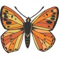 Butterfly DIY iron on stickers (heat transfer) version 16