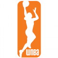 WNBA 2013-Pres Primary Logo Decals for garment decoration