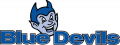 Central Connecticut Blue Devils 1994-2010 Alternate Logo iron on transfer