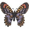 Butterfly DIY iron on stickers (heat transfer) version 6
