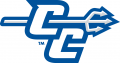 Central Connecticut Blue Devils 2011-Pres Alternate Logo 03 iron on transfer