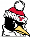 Youngstown State Penguins 1993-Pres Alternate Logo 06 iron on transfer