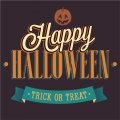 Trick or treat Halloween party shirt Heat transfer 2