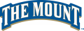 Mount St. Marys Mountaineers 2004-Pres Wordmark Logo 01 decal sticker