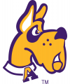 Albany Great Danes 2001-2007 Alternate Logo 0 0 02 decal sticker