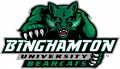 Binghamton Bearcats 2001-Pres Primary Logo decal sticker