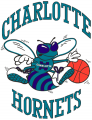 Charlotte Hornets 1988-2002 Primary Logo decal sticker