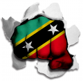 hulk Saint Kitts and Nevis Flag decal sticker