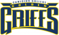 Canisius Golden Griffins 1999-2005 Wordmark Logo 02 iron on transfer
