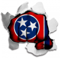 hulk Tennessee State Flag iron on transfer