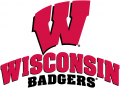 Wisconsin Badgers 2002-Pres Alternate Logo 03 iron on transfer