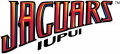 IUPUI Jaguars 2008-Pres Wordmark Logo decal sticker