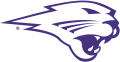 Northern Iowa Panthers 2002-2014 Partial Logo 01 decal sticker