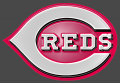 cincinnati reds 1999-pres primary plastic effect logo iron on transfer