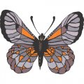 Butterfly DIY iron on stickers (heat transfer) version 8