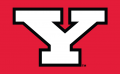Youngstown State Penguins 1993-Pres Alternate Logo iron on transfer