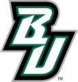 Binghamton Bearcats 2001-Pres Alternate Logo decal sticker