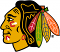 Chicago Blackhawks 1989 90-1995 96 Primary Logo iron on transfer